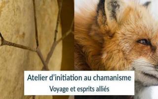 banniere-atelier_atelier-decouverte-gite-la-hulotte-broceliande